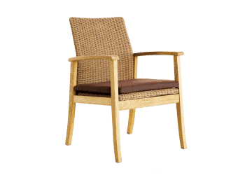 Santa Cruz Dining Chair